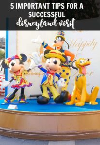 Disneyland visit tips
